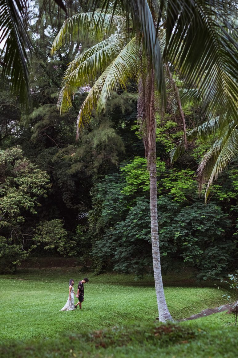 Singapore couple prewedding portrait with palm tree