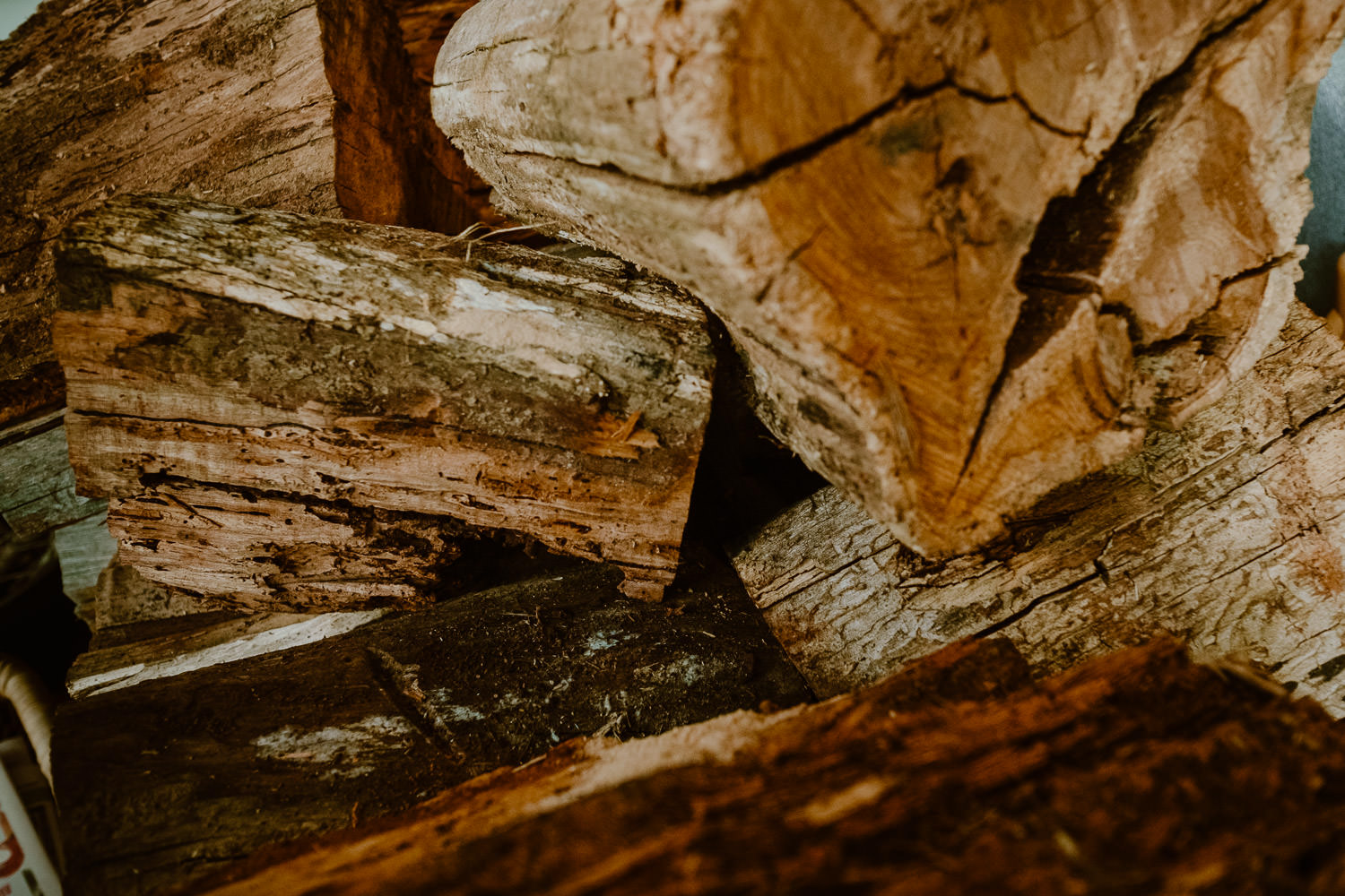 Close up shot of firewood (Multi-day Overseas Prewedding Adventure in Melbourne)